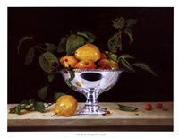 Still Life In Silver Fine-Art Print