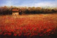 Sparkling Field Fine-Art Print