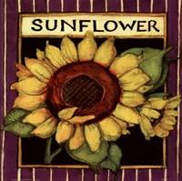 Sunflower Seed Packet Fine-Art Print