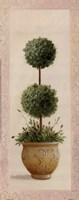 Topiary Ball II Fine-Art Print