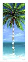 Coastal Palm III Fine-Art Print