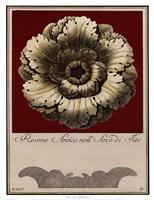 Rosone Antico III Fine-Art Print