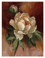 White Peonies II Fine-Art Print