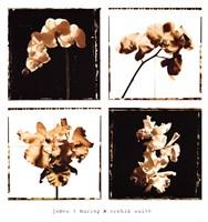 Orchid Suite Fine-Art Print