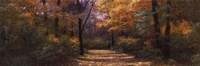 Autumn Road Panel Fine-Art Print
