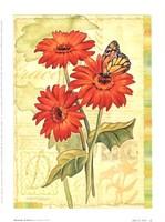 Blossoms Of Grace I Fine-Art Print