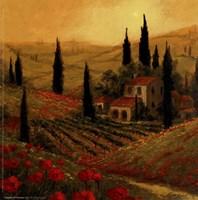Poppies Of Toscano II Fine-Art Print