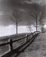 Fences And Trees, Empire, Michigan Fine-Art Print