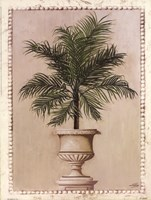 Palm Appeal II Fine-Art Print