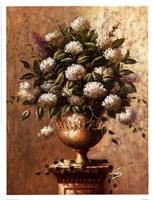 Floral Expressions l Fine-Art Print