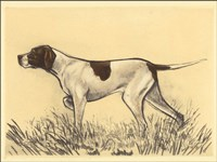 Hunting Dogs-Pointer Fine-Art Print