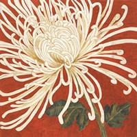 Spider Mum II Fine-Art Print