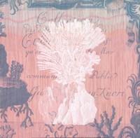 Seaside Coral II Fine-Art Print