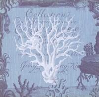 Seaside Coral III Fine-Art Print