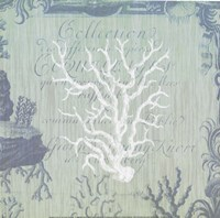 Seaside Coral IV Fine-Art Print