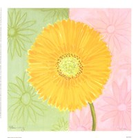 Yellow Daisy Fine-Art Print