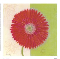 Red Daisy Fine-Art Print