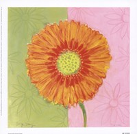Orange Daisy Fine-Art Print