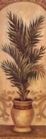Tuscan Palm I Fine-Art Print