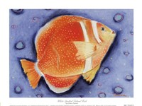 White Spotted Island Fish Fine-Art Print