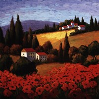 Tuscan Poppies Fine-Art Print