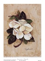Summertime Magnolia Fine-Art Print