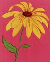 Wild Daisy III Fine-Art Print