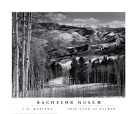 Bachelor Gulch Fine-Art Print