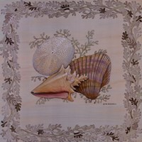 Pastel Shell I Fine-Art Print
