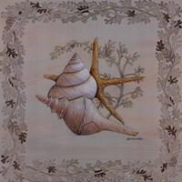 Pastel Shell II Fine-Art Print