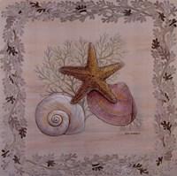 Pastel Shell III Fine-Art Print