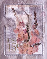 Love Letter Gladioli Fine-Art Print