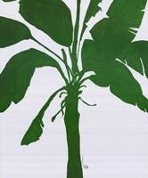 Silhouette Of Palm 2 Fine-Art Print