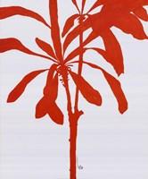 Silhouette Of Palm 3 Fine-Art Print