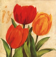 Red, Orange, Yellow Tulips Fine-Art Print
