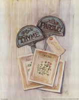 Seed Packs Fine-Art Print