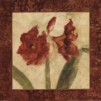 Sienna Quartet I Fine-Art Print