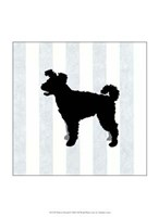 Pumi In Neutral Fine-Art Print