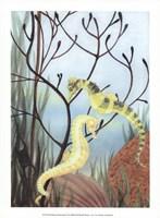 Seahorse Serenade II Fine-Art Print