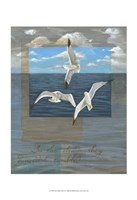 Three White Gulls II Fine-Art Print