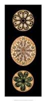 Kaleidoscope Anemone II Giclee