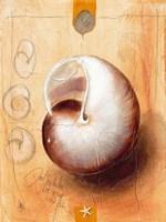 Das Schneckenhaus Fine-Art Print