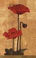Golden Poppy II Fine-Art Print