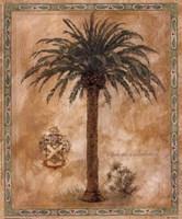 Phoenix Canariensis Fine-Art Print