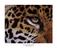 Camouflage Fine-Art Print