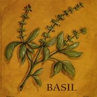 Basil Fine-Art Print