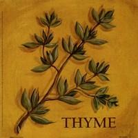 Thyme Fine-Art Print
