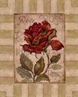 Belle Fleur I Fine-Art Print