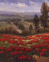 Poppy Vista II Fine-Art Print