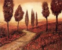 Strada Tra I Papaveri Fine-Art Print